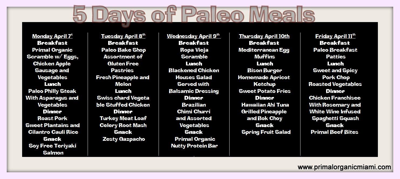 Primal Organic Miami Paleo meal plan delivery menu